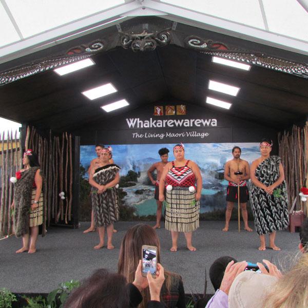 espectaculo maori