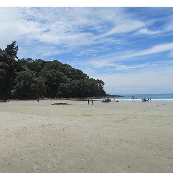orokawa bay