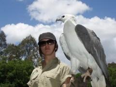 A bigger bird