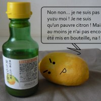 Macarons au yuzu (Christophe Felder & Pierre Hermé)