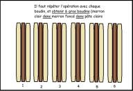 schéma5