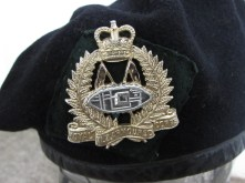 NZ Armoured Corps beret badge