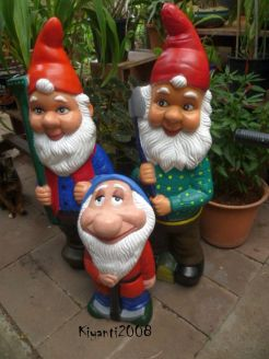 Garden Gnomes After 1
