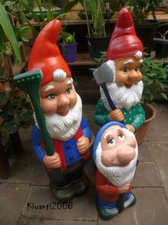 Garden Gnomes After 2