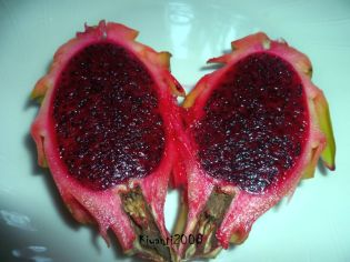 Dragon Fruit - It is Red - May 02 -2017
