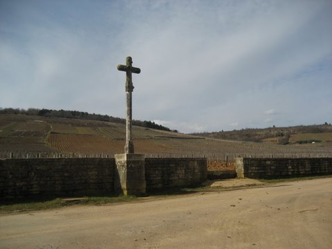 March2010 Burgundy 010