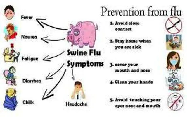 What is Swine Flu and How to Prevent It?