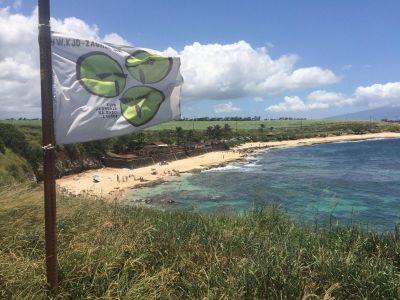 KJDZG na havajima