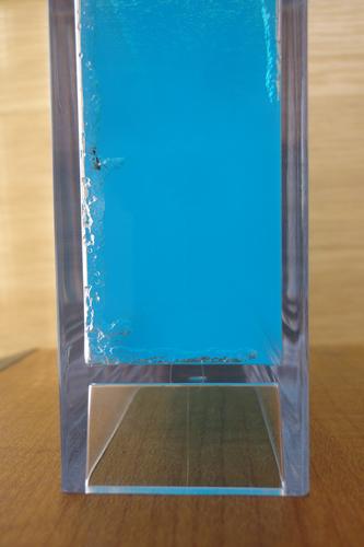 アントクアリウム.5
