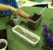Students then took a few pinches of seeds and sprinkled them on top of the dirt.