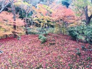 紅葉の美しい京都の嵐山にある素敵なお土産屋さん