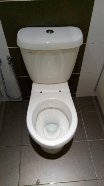 マレーシア トイレ 便座なし