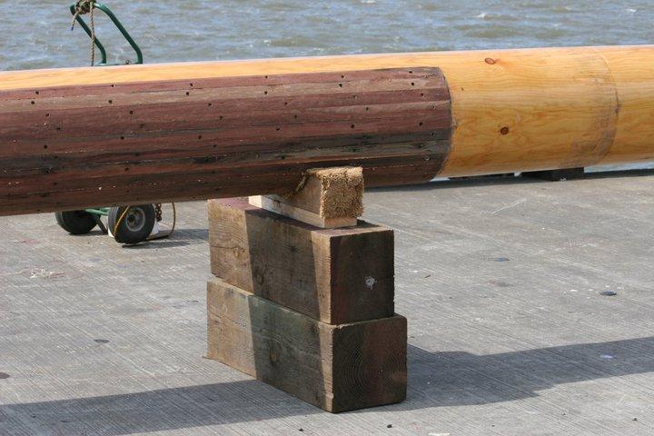 Hier sieht man den Hartholz-Schutz wo die Gaffelklau ansitzt.