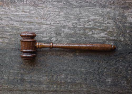 Juli Zeh zwischen Recht und Sprache