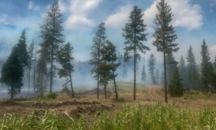 50 Acre Wildfire Near Bryant Mountain in Langell Valley South of Bonanza