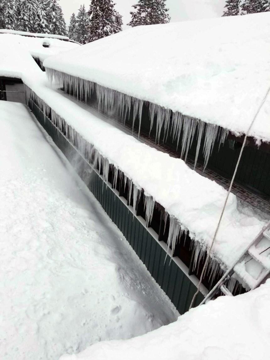 snow-gilchrist 4