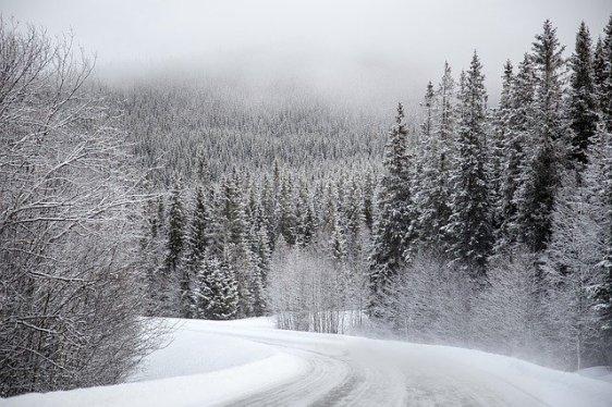 snow-1246199_640
