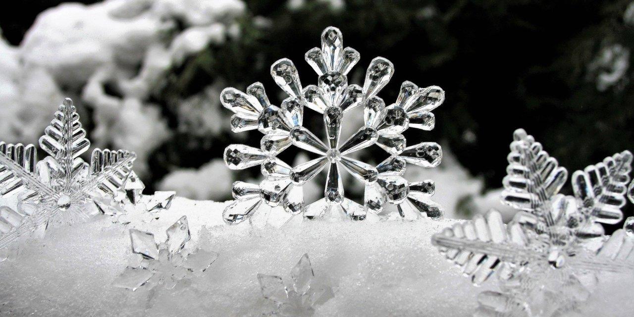 Snowflake Parade This Thursday