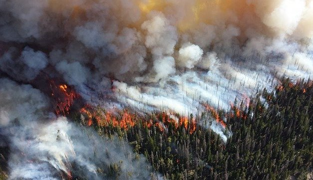 PACIFICCORP to pay $3.4 million settlement in Ramsey Canyon Fire (Jackson County)