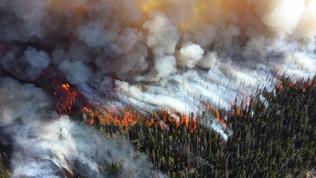 Local air quality is being reduced by Russian fires