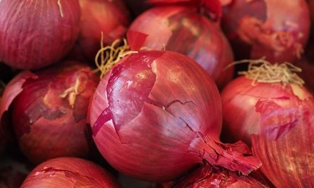 OHA investigating 76 cases of Salmonella linked to red onions