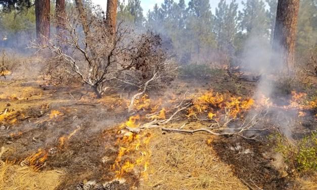 Coyote Prescribed Fire begins – Silver Lake Area