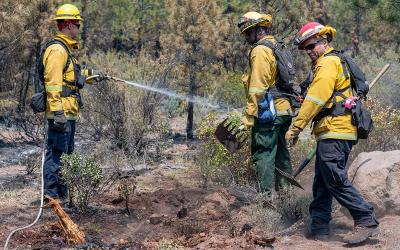 Bootleg firefighters test positive for COVID-19