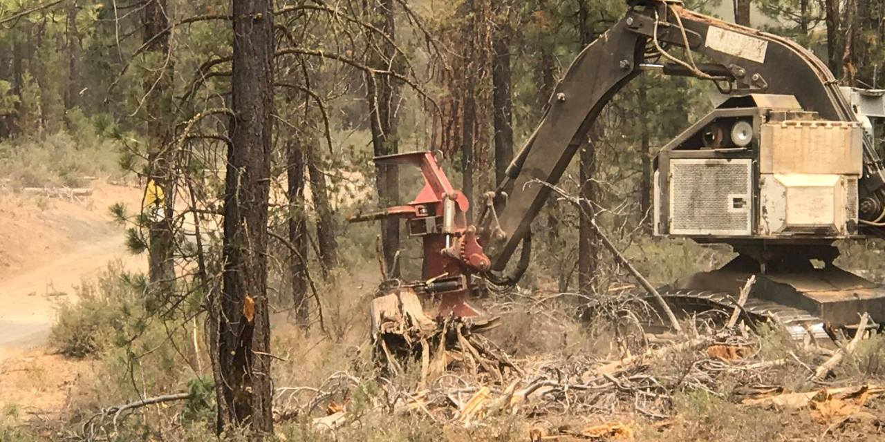Update on the Log Fire northeast of the Bootleg Fire