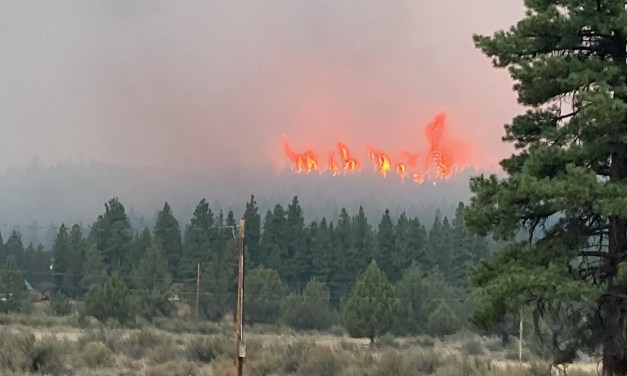 Patton Meadow and Willow Valley Fire evening update 8/13