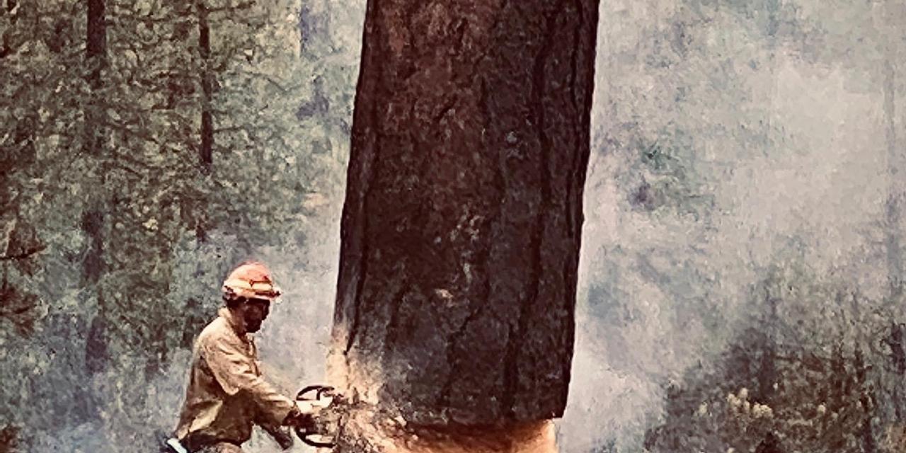 Cougar Peak Fire Update-September 29, 2021