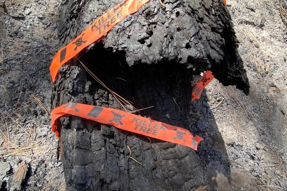 Cougar Peak Fire Update- September 30, 2021