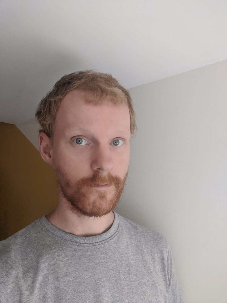 <strong>Meet the Author: </strong>Mark Johnston