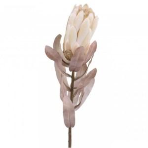 Chic Antique Protea blomst