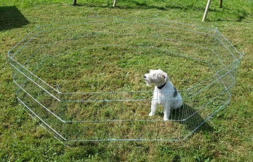 Kojec dla psa 81x65-8
