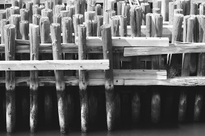 wood lines - view from American Merchant Mariner's Memorial