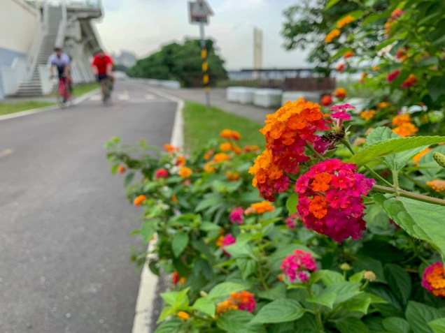 Wide and paved cycling paths took me west out of Taipei