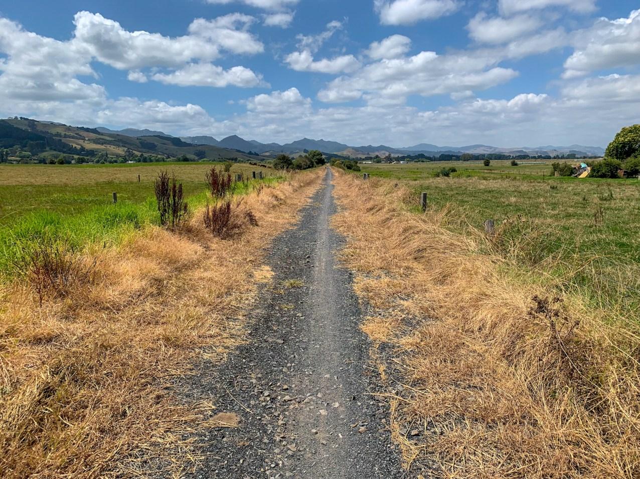 Open farm land along the Hauraki Rail Trail