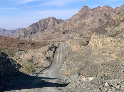 Diving deeper into the desert experience