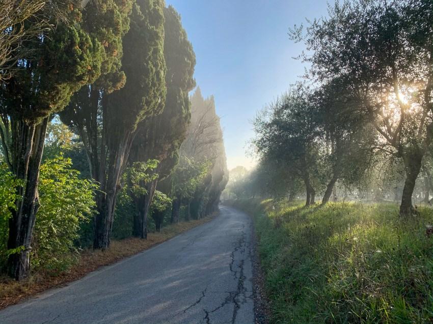 Morning fog after leaving Siena