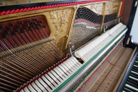 Grotrian Steinweg Klavier Resatauration neue Hammerköpfe