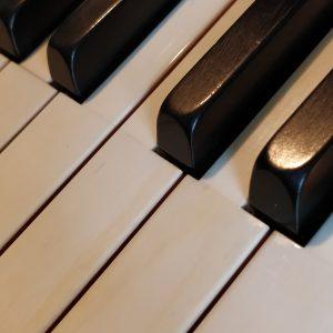 Klaviertasten aus Ebenholz und Elfenbein