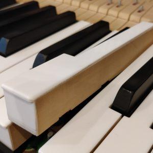 Klaviertaste von der Seite