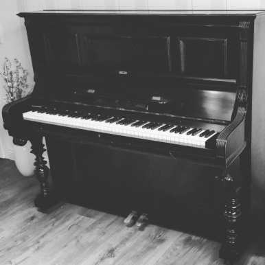 Ein Traum in Schelllack #instapiano #pianolover #pianopiano #pianokeys #pianos #pianogram #pianoman #pianomusic #pianoplayer #pianolove #music #pianist #piano#pianoforte #piano #music #klavierspielen #klavierunterricht #klavierstück #pianocover #musik #pianomusic #klavierkonzert #klavierkunst #musician #klaviernoten #klavierüben #klaviermusikzumträumen #klavierabend #pianolessons #pianolove #klavieres #pianolesson #pianolover #klaviercover