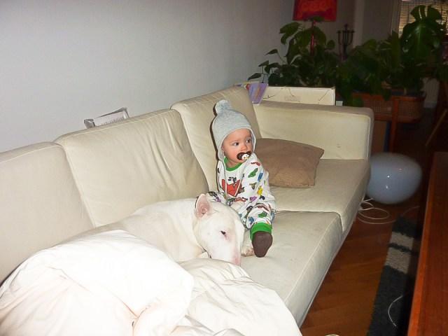 Morgonmys med Knaster i soffan