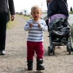 Efter att käkat ostbuffén i Falköping åkte vi till Hornborgasjön för att kolla på tranor