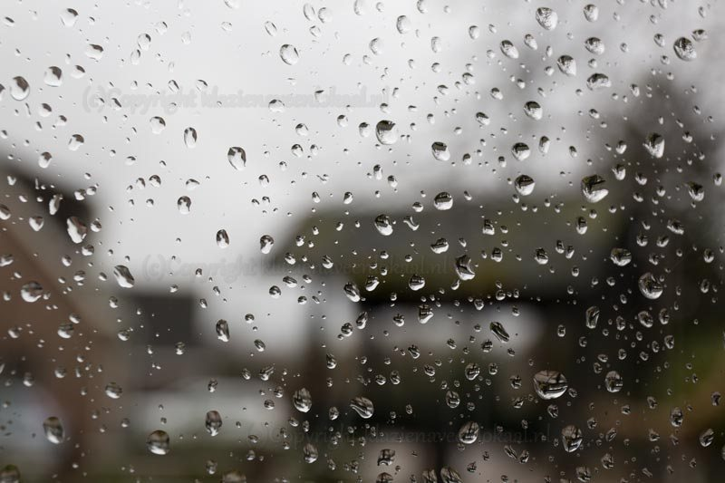 regendruppels, raam, glas