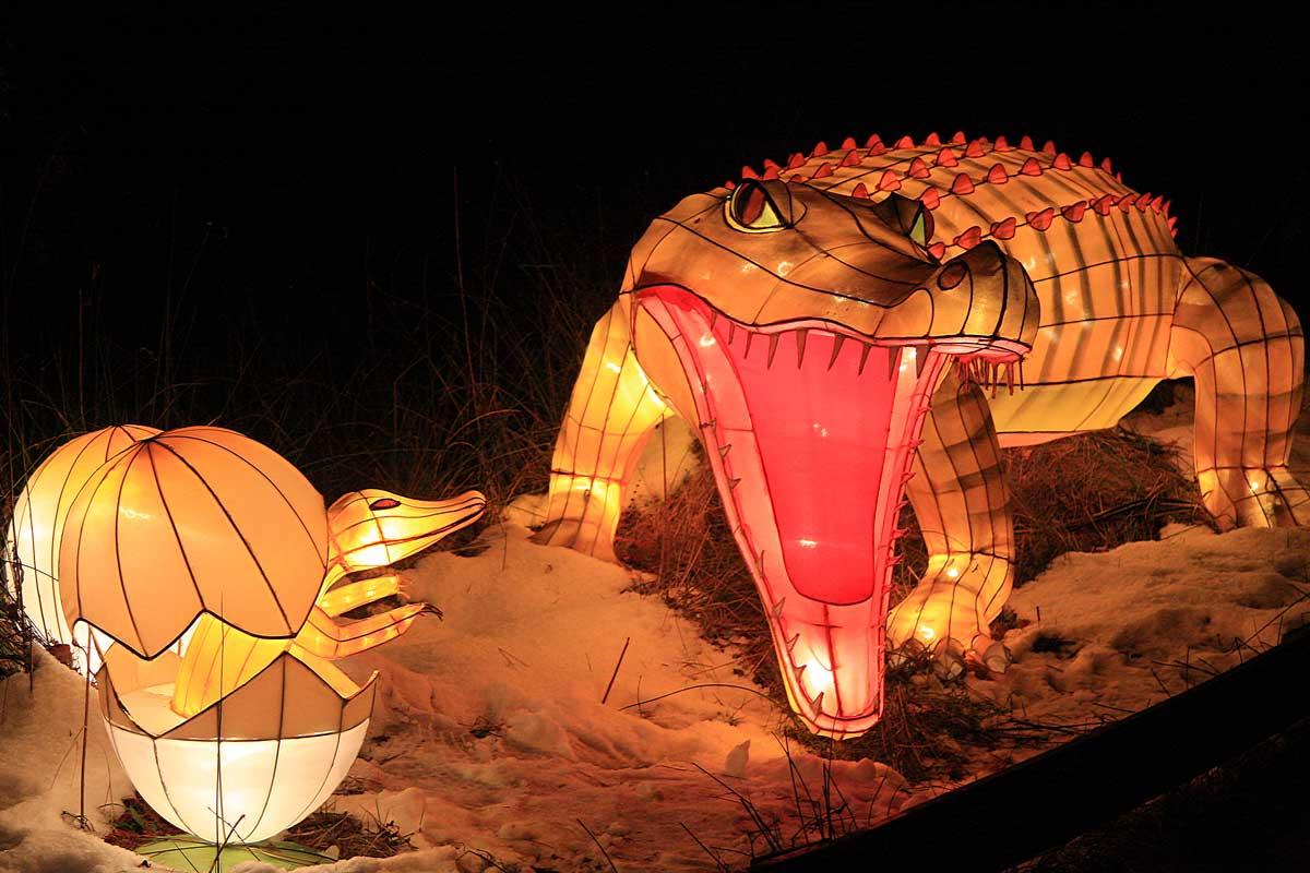 China-Lights-2009-(186)1