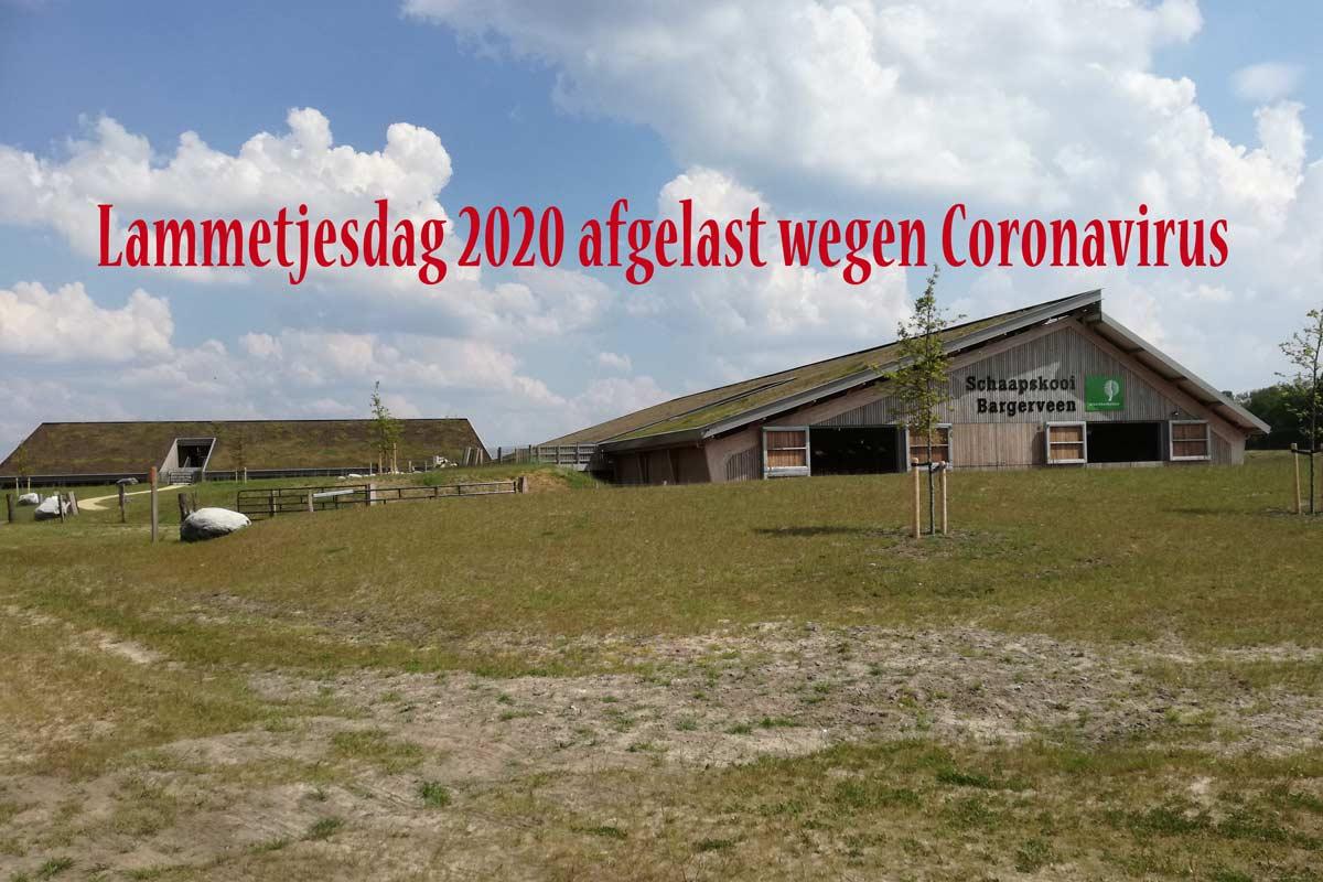 Lammetjesdag-schaapskooi-2020-1