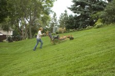 Twin Cities Lawn Care Companies