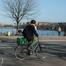 Dronning Louises fietser 48